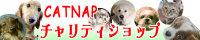 080806_catnap_bnr
