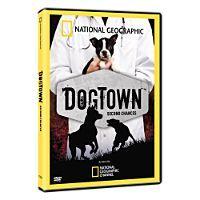 20090910_dogtown2