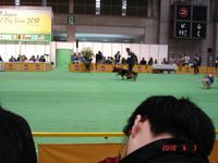 20100403_fci3