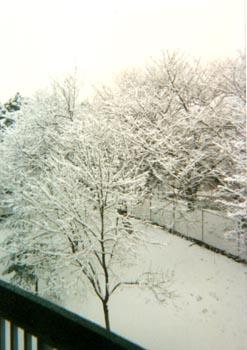 Gaithersburg snow
